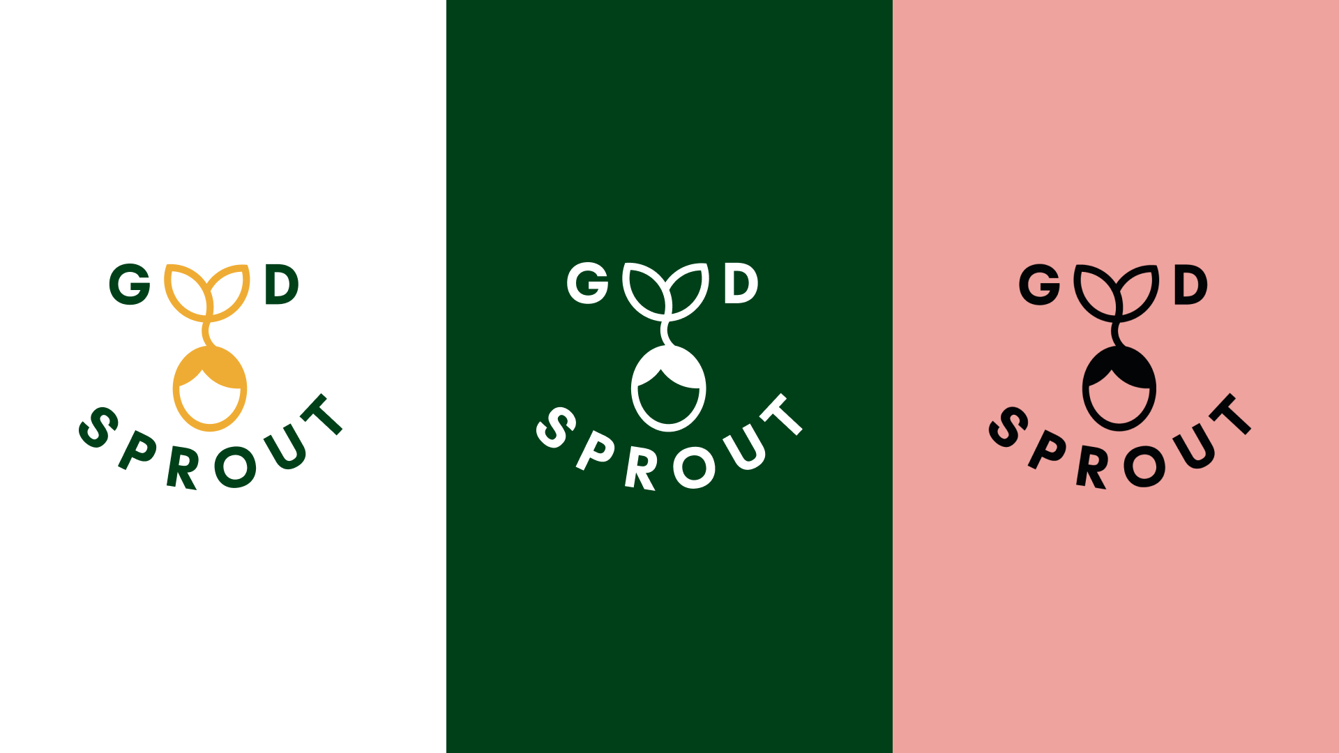 Projekt Good Sprout 8